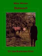 Blutrausch. Mike Winter Kriminalserie, Band 10. Spannender Kriminalroman über Verbrechen, Mord, Intrigen und Verrat.