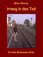 Irrweg in den Tod. Mike Winter Kriminalserie, Band 13. Spannender Kriminalroman über Verbrechen, Mord, Intrigen und Verrat.