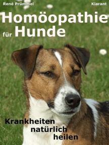 prostata hund homöopathie