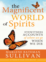 Magnificent World of Spirits, The