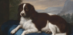 Virginia Woolf's Little-Known Biography of a Cocker Spaniel