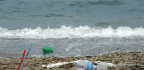 European Parliament Approves Ban On Some Single-Use Plastics, Reduction On Others