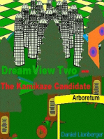 Dream View Two -- The Kamikaze Candidate