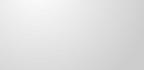 Where the Ferns Grow