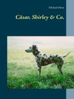 Cäsar, Shirley & Co.