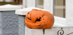 Discarding Halloween Pumpkins Adds To Greenhouse Effect, So Take Advantage Of A Drop-off Site Or A Pumpkin Smash