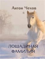 A Horsey Name