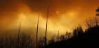 Death Toll Jumps To 29 In Northern California's Camp Fire