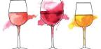 Biodynamic and Organic Wine