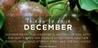 Things To Do In DECEMBER