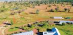 Greenest & Most Sustainable Garden