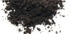 Moon Planting