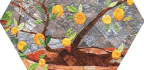 Lemon Tree in Tuscany