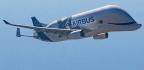 A Whale Aircraft