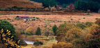 Of The Land