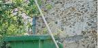 Make Your Garden Waste Bin Redundant