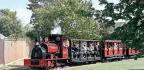 Nine Steam At Leighton Buzzard Gala