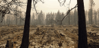 Northern California Fire Victims File Class-action Lawsuit Against Utility Company