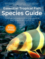 Essential Tropical Fish