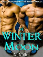 A Winter Moon - Gay Paranormal Romance