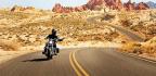 The Lone Rider