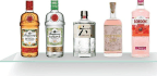 A World Of Gin