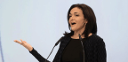 Sheryl Sandberg Asked Facebook Staff To Investigate George Soros' Finances