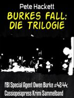 Burkes Fall