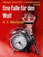 Eine Falle für den Wolf