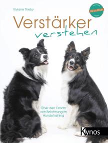 Verstärker verstehen: Über den Einsatz von Belohnung im Hundetraining