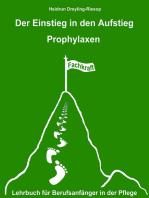 Der Einstieg in den Aufstieg IX