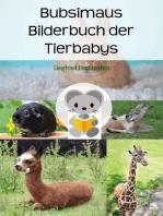 Bubsimaus Bilderbuch der Tierbabys