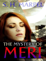 The Mystery of Meri