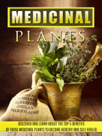 Medicinal Plants Discover and Learn About the Top 5 Benefits of These Medicinal Plants to Become Healthy and Self-Healed