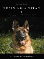 Training a Titan I