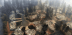 Police Investigate Behavior Of Camp Fire Cleanup Workers Who Posted Offensive Photos