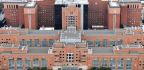 NIH Hospital's Pipes Harbored Uncommon Bacteria That Infected Patients