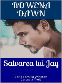 Salvarea lui Jay: Familia Winston, #3