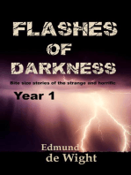 Flashes of Darkness - Year 1