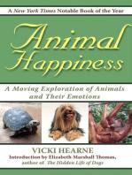 Animal Happiness