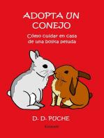 Adopta un conejo. Cómo cuidar en casa de una bolita peluda