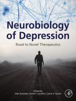 Neurobiology of Depression: Road to Novel Therapeutics