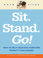 Sit. Stand. Go!