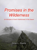 Promises in the Wilderness