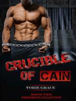 Crucible of Cain