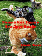 Умный Кот Тоша и Его Друг Брэйк