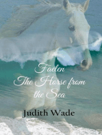 Faelen, The Horse from the Sea