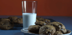 A Fond Farewell — With Cookies