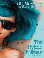 The Hybrid Challenge