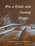 On a Dark and Snowy Night ...